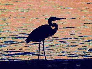 heron in abstract